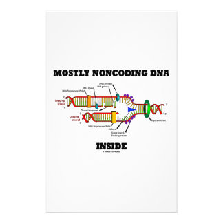 Mostly Noncoding DNA Inside (DNA Replication) Stationery