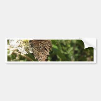 Moth Bumper Sticker