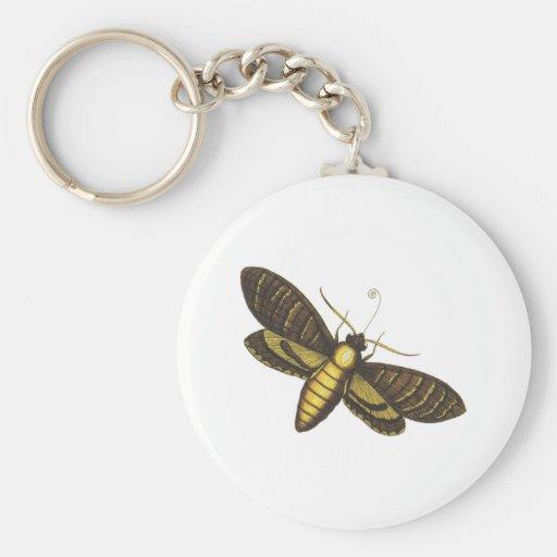 Moth moth key chains