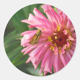 moth on flower round sticker