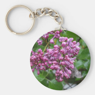 Moth on Lilac Bush Basic Round Button Key Ring