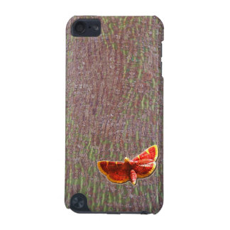Moth on tree bark iPod touch 5G case