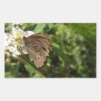 Moth Rectangular Sticker