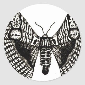 moth round sticker