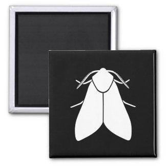 Moth Square Magnet