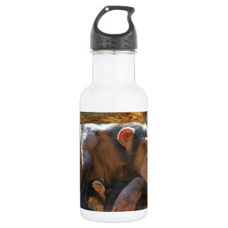 Mother and Baby 532 Ml Water Bottle