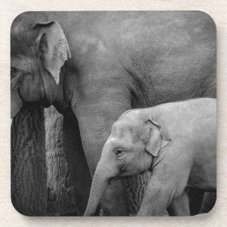 mother and baby elephant coaster