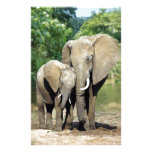 Mother And Baby Elephant Personalized Stationery