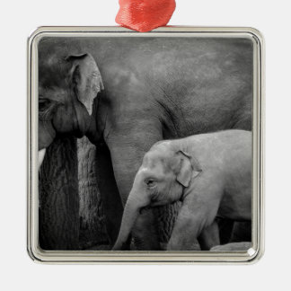 mother and baby elephant Silver-Colored square decoration