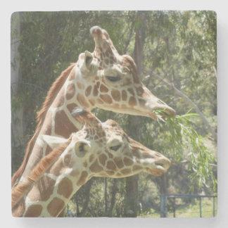 Mother and Baby Giraffe Coaster Set Stone Beverage Coaster