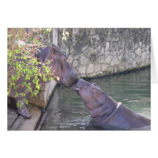 Mother and baby hippos note card