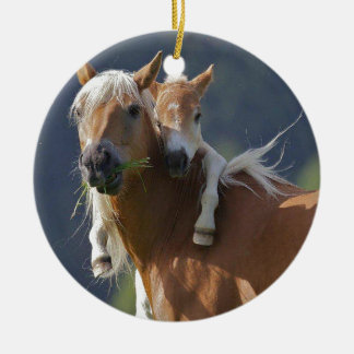 Mother and Baby Horse Christmas Ornament