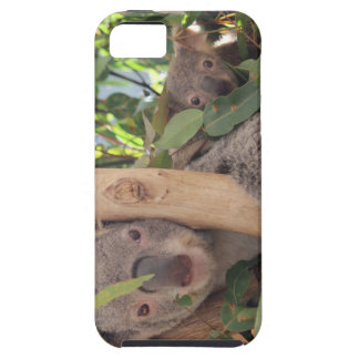 Mother and Baby Koala iPhone 5 Cover