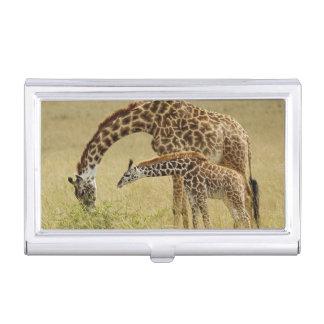 Mother and baby Masai Giraffe, Giraffa Business Card Holder