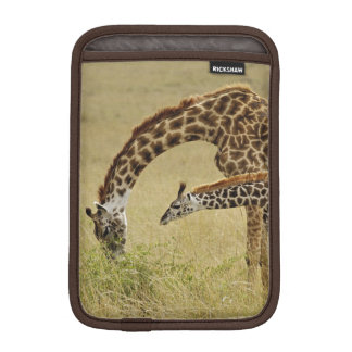 Mother and baby Masai Giraffe, Giraffa iPad Mini Sleeve