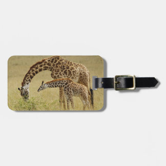 Mother and baby Masai Giraffe, Giraffa Luggage Tag
