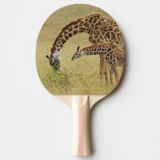 Mother and baby Masai Giraffe, Giraffa Ping Pong Paddle