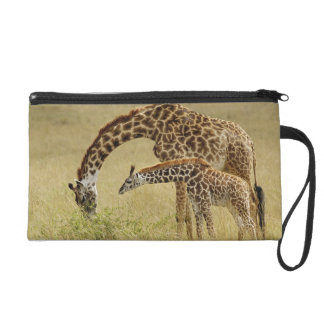 Mother and baby Masai Giraffe, Giraffa Wristlet