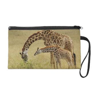 Mother and baby Masai Giraffe, Giraffa Wristlet Purse