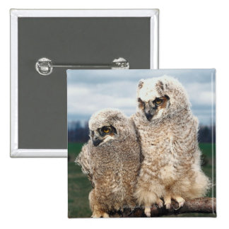Mother and Baby Owl 15 Cm Square Badge
