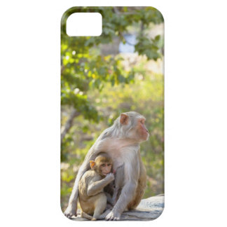 Mother and baby Rhesus Macaque monkeys on wall iPhone 5 Case
