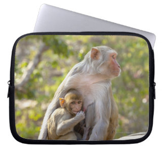 Mother and baby Rhesus Macaque monkeys on wall Laptop Computer Sleeves