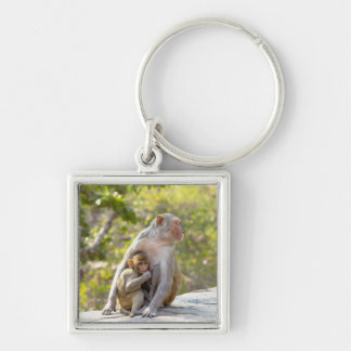 Mother and baby Rhesus Macaque monkeys on wall Silver-Colored Square Key Ring