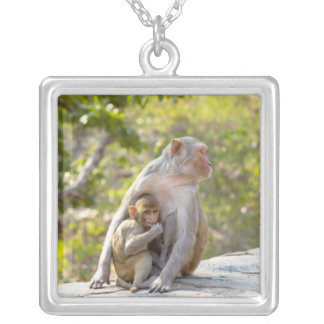 Mother and baby Rhesus Macaque monkeys on wall Silver Plated Necklace