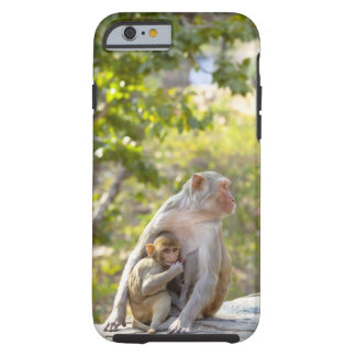 Mother and baby Rhesus Macaque monkeys on wall Tough iPhone 6 Case