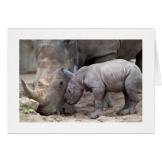 Mother and Baby Rhino Card