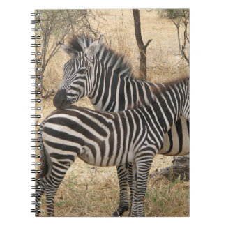 Mother and Baby Zebra  Notebook