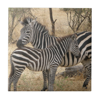 Mother and Baby Zebra  Tile