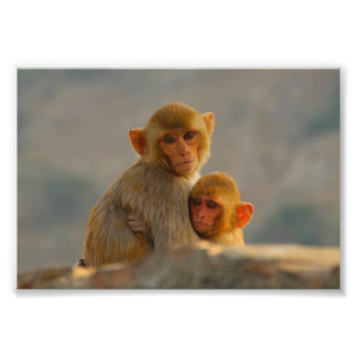Mother and Child at the Monkey Temple Photo Print