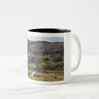 Mother and child connection Two-Tone coffee mug