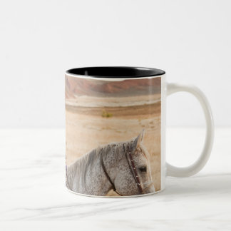 Mother and daughter riding horse Two-Tone mug