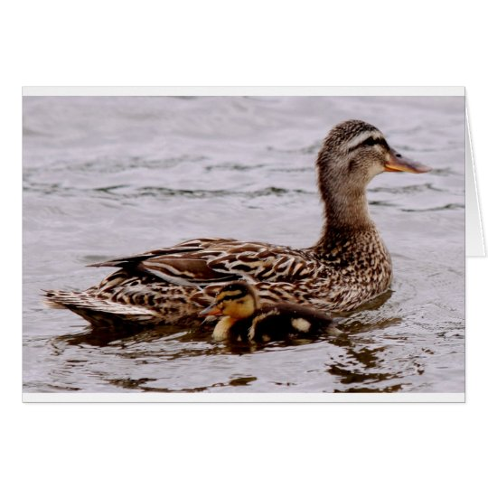 mother and duckling card