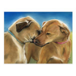 """Mother and Son Reunion"" Rhodesian Ridgeback Postc Postcards"