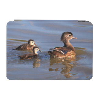 Mother and Wood Ducklings iPad Mini Cover