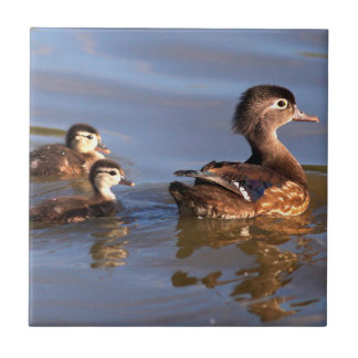 Mother and Wood Ducklings Small Square Tile