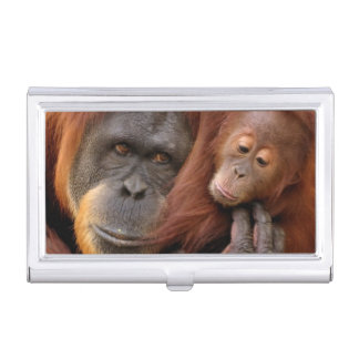 Mother & Baby Orangutan Business Card Holder