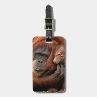Mother & Baby Orangutan Luggage Tag