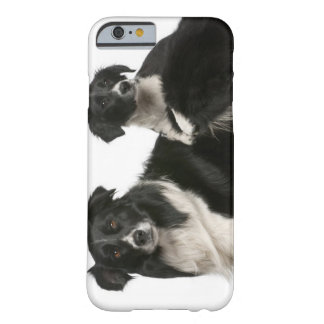 Mother border collie and puppy barely there iPhone 6 case