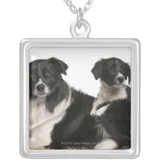 Mother border collie and puppy silver plated necklace