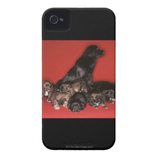 Mother dog with puppies Case-Mate iPhone 4 case