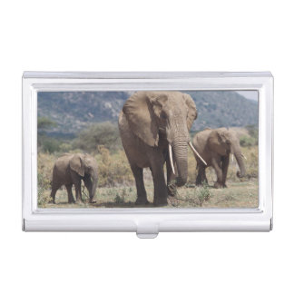 Mother elephant walking with elephant calf business card holder