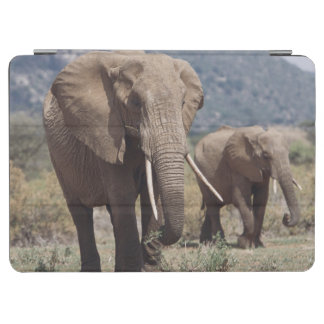 Mother elephant walking with elephant calf iPad air cover