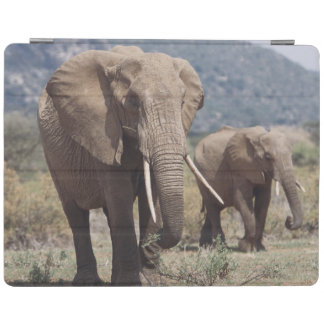 Mother elephant walking with elephant calf iPad cover