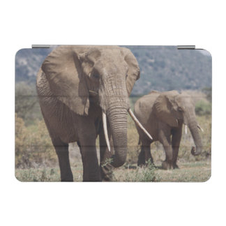 Mother elephant walking with elephant calf iPad mini cover