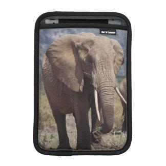 Mother elephant walking with elephant calf iPad mini sleeves