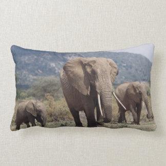 Mother elephant walking with elephant calf lumbar cushion